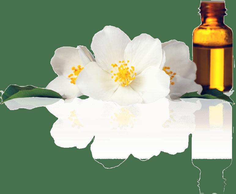 Metta Therapeutics & Massage Services